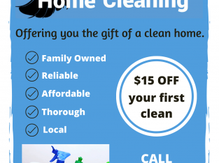 Cleaning $15 off your first clean