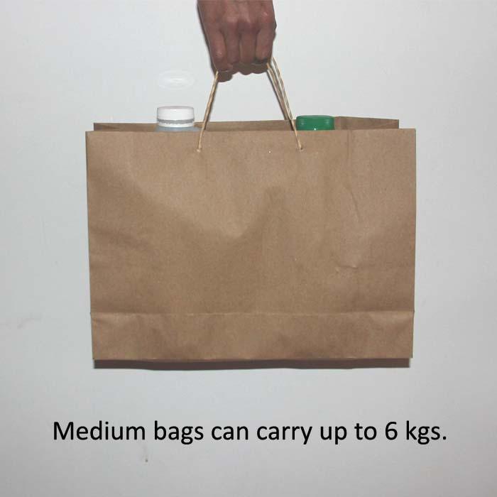 BULK Brown Paper Bags with handles